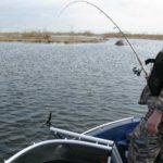 Чем привлекательна рыбалка в Астрахани?